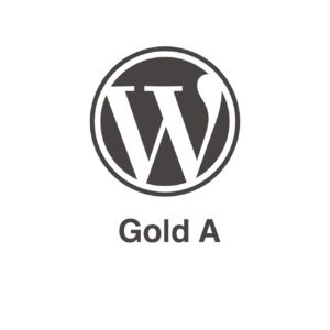 Pack mantenimiento Wordpress Gold A