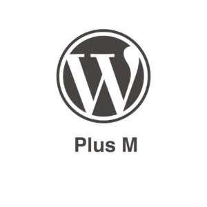 Pack mantenimiento Wordpress Plus M