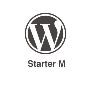 Pack de mantenimiento Wordpress Starter M