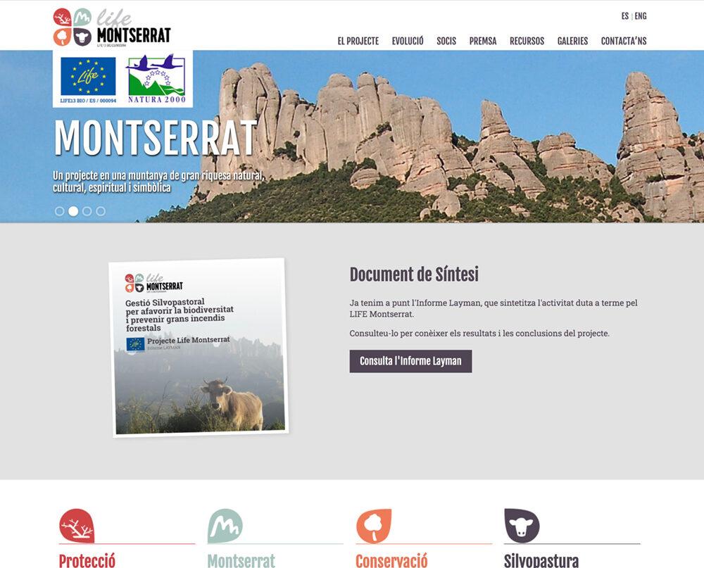 Mantenimiento web Life Montserrat